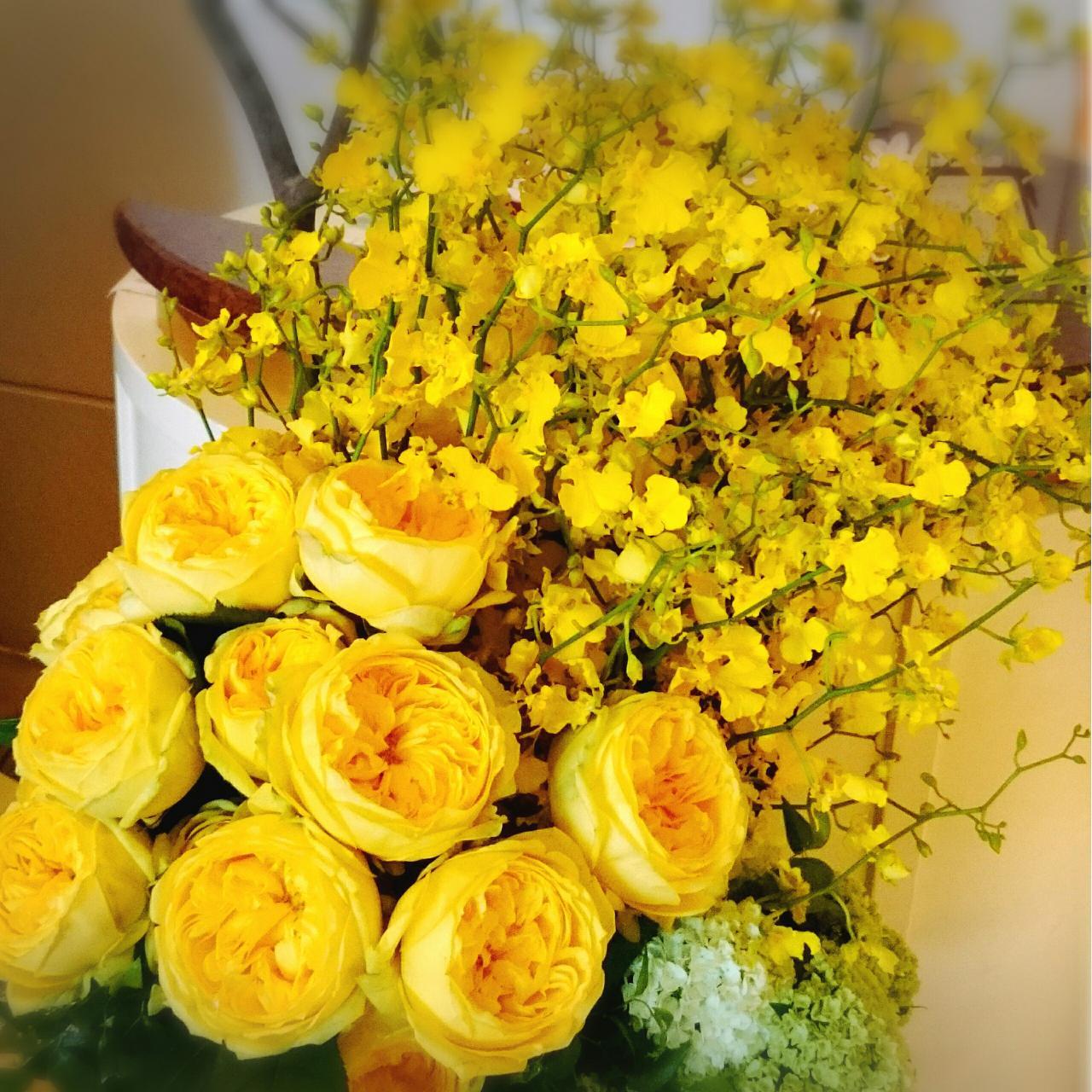 ورد اصفر طبيعي انواع ورود مختلفه تحمل اللون الاصفر دموع جذابة