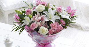صور اسماء الازهار والورود , هل فكرت فى اسم الورده التى تحبها