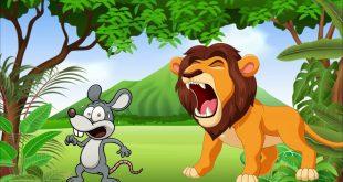 صور قصص اطفال قصيرة ومفيدة , قصة الاسد ملك الغابه مع الفار الضعيف