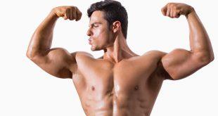 صور كيفية بناء العضلات , طرق فعاله جدا للحصول على عضلات جذابه