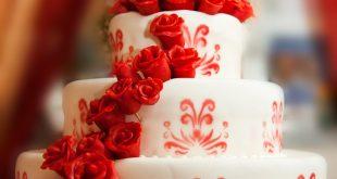 صور صور احلى تورتة عيد ميلاد , تورته جميله للاحتفال بميلاد من تحب