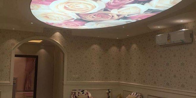 صورة اسقف فرنسية ثلاثية الابعاد , اشيك و احدث الاسقف لثلاثية الابعاد