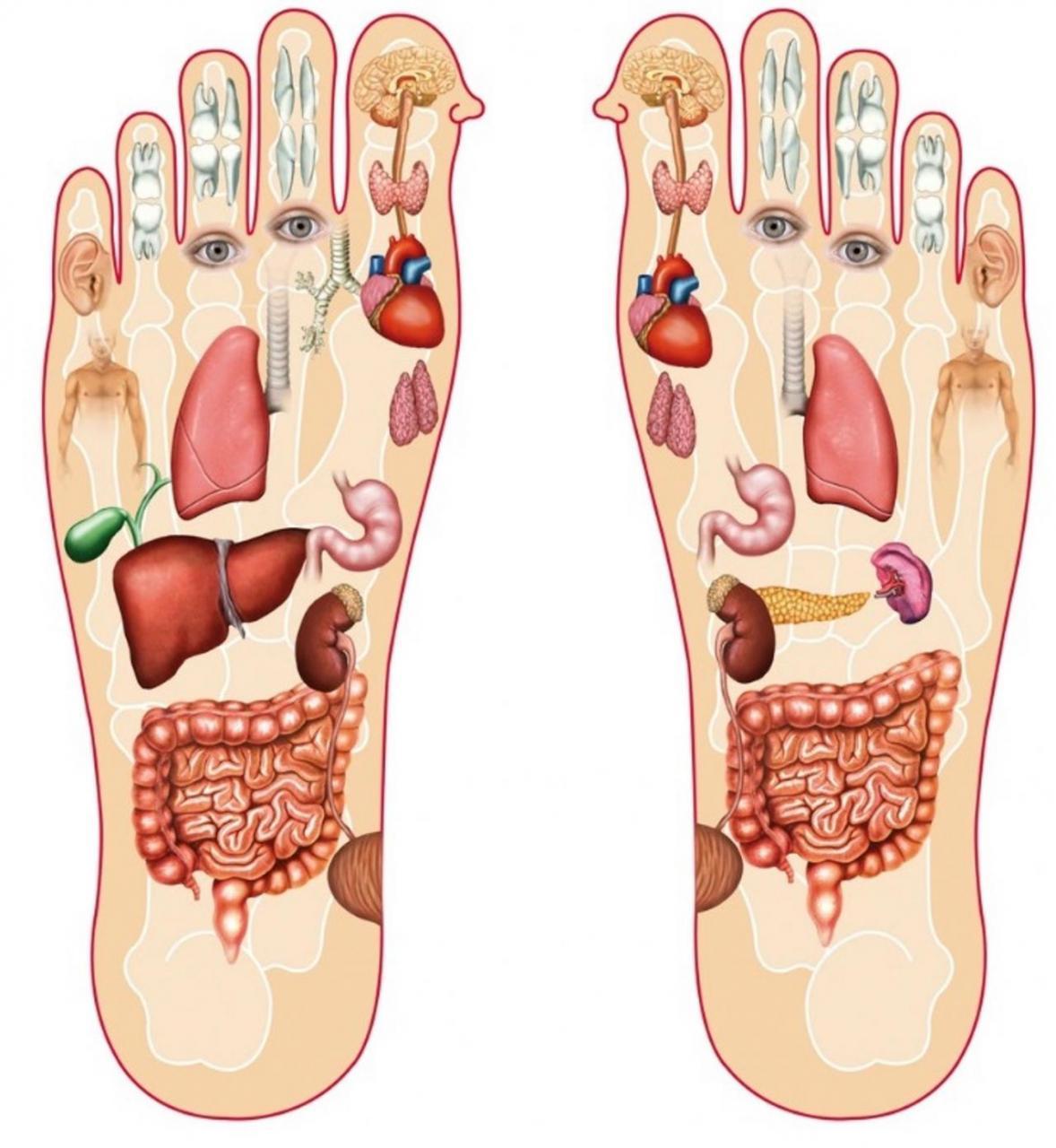 صورة علاج الم باطن القدم , اسباب و طريقة سهلة لعلاج الم باطن القدم
