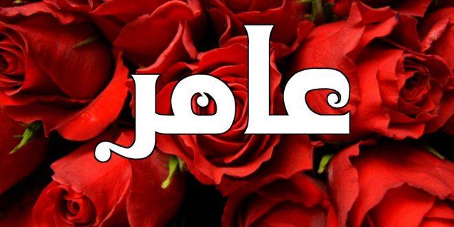 صورة معنى اسم عامر , صفات حامل الاسم