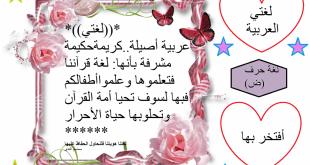 صورة مقدمة قصيرة عن اللغة العربية , مالاعرفة عن اللغة العربية