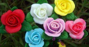 صور لورود جميله , احلي وردة ممكن تشوفها في حياتك
