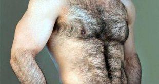 صورة شعر الصدر عند الرجل , صور لشعر صدر الرجل