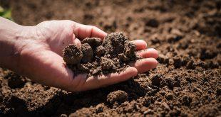 صورة بحث حول التربة , تاثير الانسان عليها