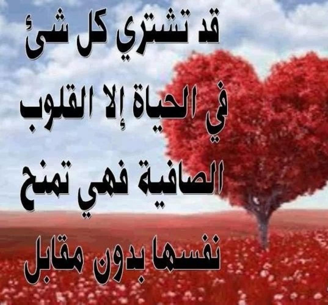 صورة الحب والعشق والغرام , كل ما يخص العشق والغرام