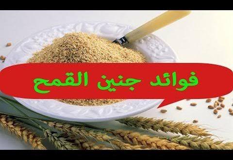صورة ما فوائد جنين القمح , تعرفوا علي فائدته المذهلة