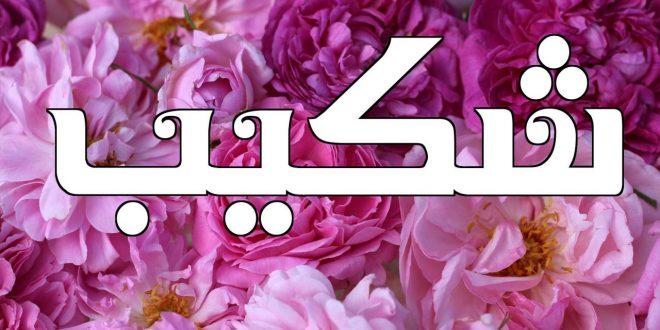 صورة معنى اسم شكيب , ما معني وشرح اسم شكيب