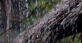 صورة حلمت بمطر غزير , الخير والرزق في طريقك