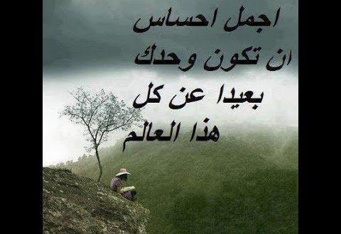 صورة صور واتساب حزينه , اجدد الصور الحزينة اللي ممكن تشوفها علي الواتساب