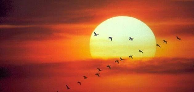 صورة صور نور الشمس , صور نادرة لجمال الشمس الطبيعي