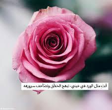 قصائد عن الورد , راقت لي اجمل قصيدة عن الورد