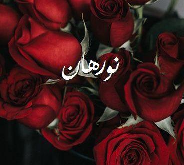 صورة ما معنى اسم نورهان , اسم نورهان وجمال معناه وصفاته